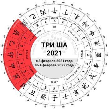 три ша 2021